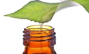 эфирные масла от перхои