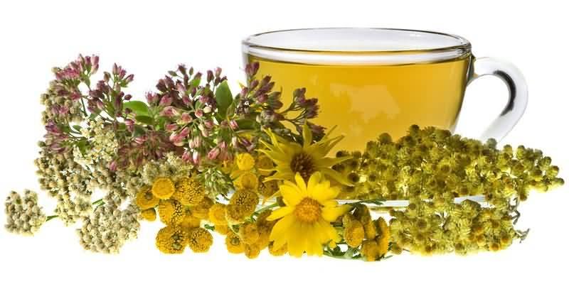 narodnaya meditsina lecheniye